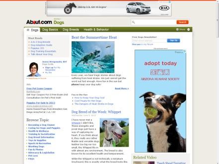 Arizona Humane Society - Adopt Dog1 - MWSK
